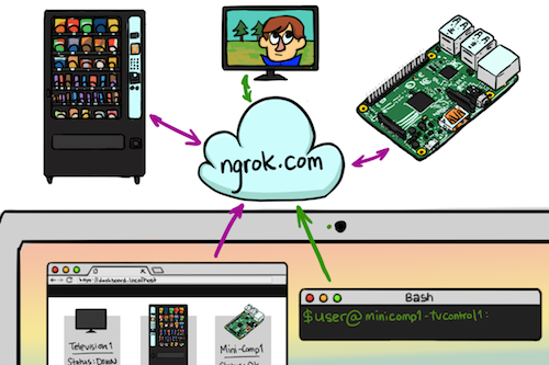 Keep ngrok running forever on Raspberry Pi – Crazy Koder